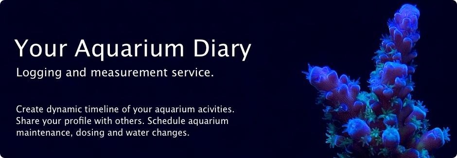 Aquarium - Magazine cover
