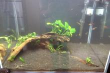 121 Litre Fresh Water Thumbnail