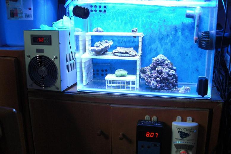 Update of Frag Tank August 2, 2015