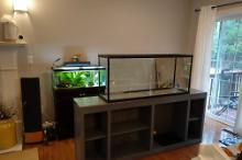 New 55g Tank Stand Construction 9